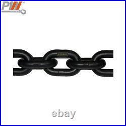 Prowinch 1/2 Ton Electric Chain Hoist Power Trolley 20 ft. G100 Chain M4/H3 2