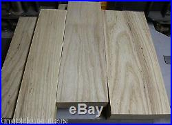 Swamp Ash Sumpfesche Body blank Tonholz selektiert gleichmäßige Maserung +++